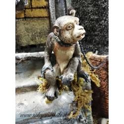 Scimmia 3