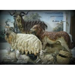 Mandrie di pecore