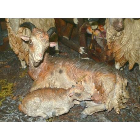 Capra con agnellino
