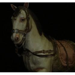 Cavallo arabo 1