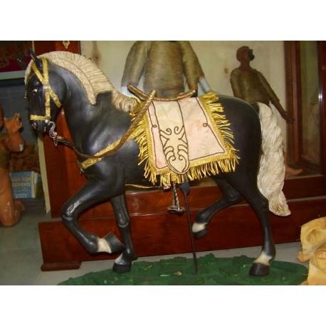 Cavallo arabo 2