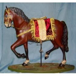 Cavallo arabo 3