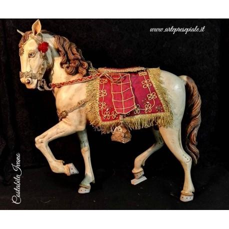 Cavallo arabo con crina sciolta