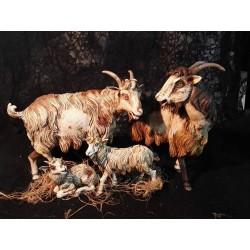 Capre con agnelli