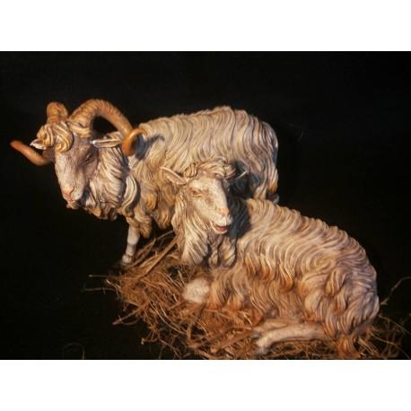 Coppia arieti con pecora - Presepe napoletano di Cantone & Costabile